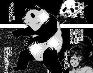 パンダ先輩 核